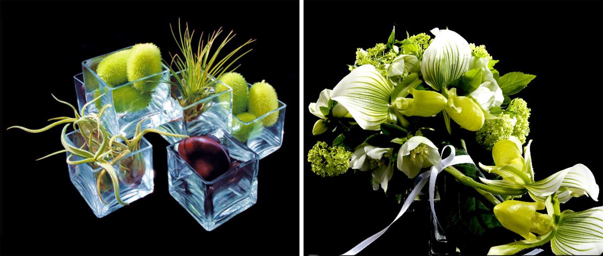 Djordje vous offre des fleurs chic geek for Offre des fleurs