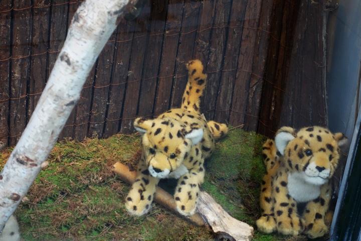 Baby-Tuileries-Vitrine-Noel-2012-Leopards-2