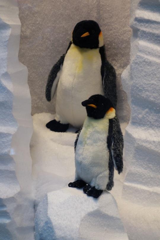 Baby-Tuileries-Vitrine-Noel-2012-Pingouins-5