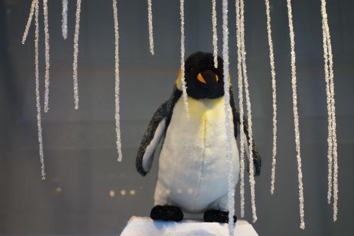 Baby-Tuileries-Vitrine-Noel-2012-Pingouins-6