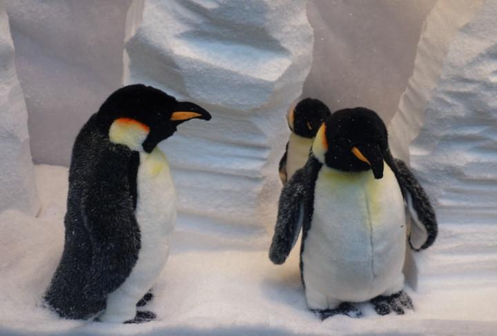 Baby-Tuileries-Vitrine-Noel-2012-Pingouins-7
