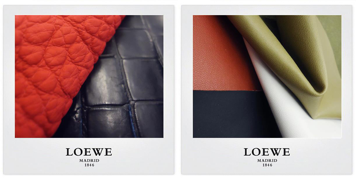 LOEWE-preparation-collection-matieres
