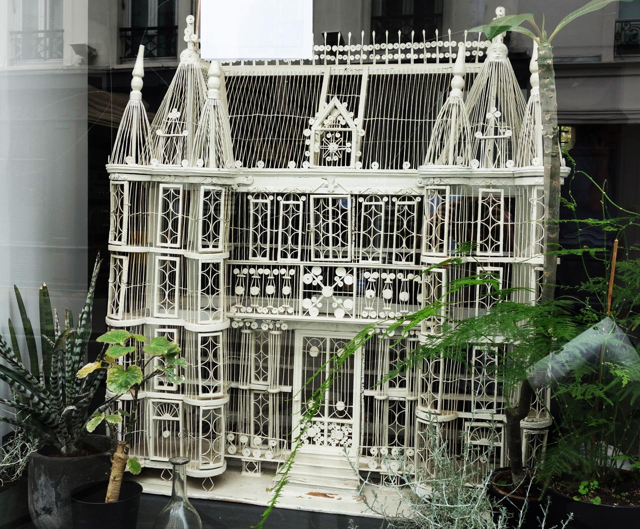 David-Gaillard-Les-Curieuses-boutique-vitrine-cage-ancienne