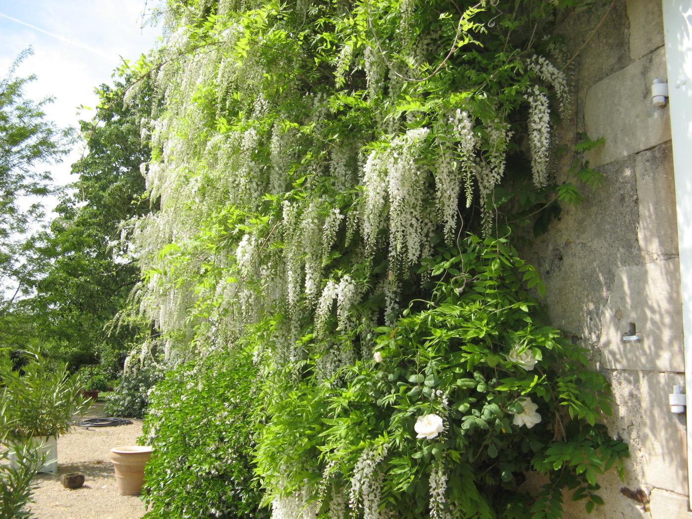 jardins-de-marta-31