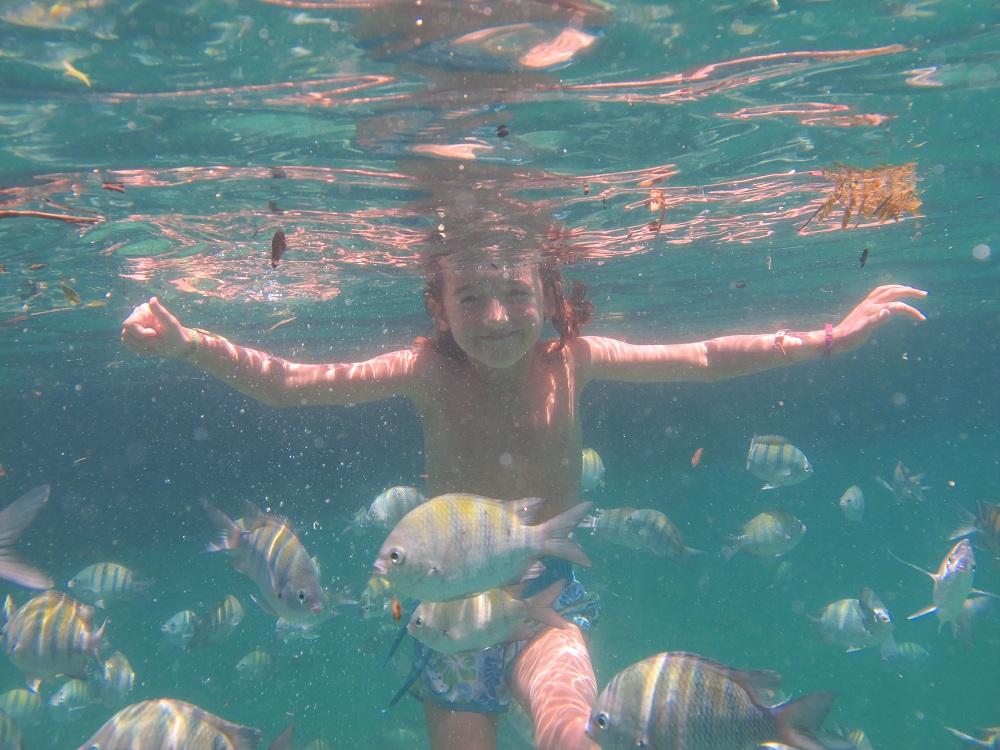 UFAO-Lena-poissons