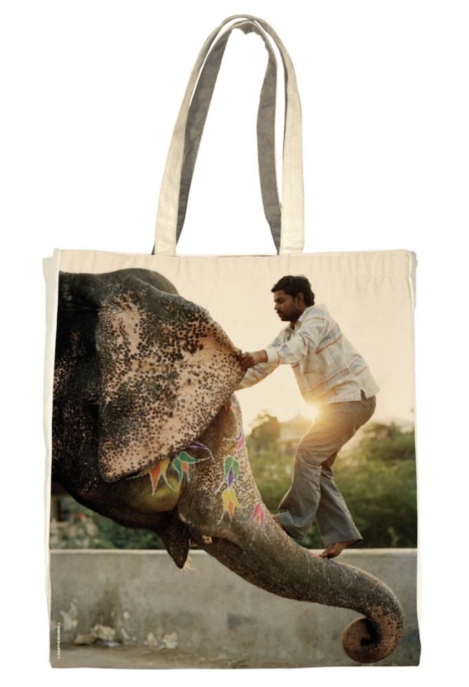 fragonard-sac-charite-elephant